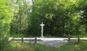 Randonnée Marche SAINT-JEAN-AUX-BOIS - en forêt de Compiègne_19_le Puits d'Antin_les Mares St-Louis_La Muette - Photo 148