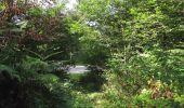Randonnée Marche SAINT-JEAN-AUX-BOIS - en forêt de Compiègne_19_le Puits d'Antin_les Mares St-Louis_La Muette - Photo 128