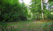 Randonnée Marche SAINT-JEAN-AUX-BOIS - en forêt de Compiègne_19_le Puits d'Antin_les Mares St-Louis_La Muette - Photo 135