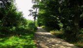 Randonnée Marche SAINT-JEAN-AUX-BOIS - en forêt de Compiègne_19_le Puits d'Antin_les Mares St-Louis_La Muette - Photo 82