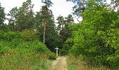Randonnée Marche SAINT-JEAN-AUX-BOIS - en forêt de Compiègne_19_le Puits d'Antin_les Mares St-Louis_La Muette - Photo 30