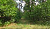 Randonnée Marche SAINT-JEAN-AUX-BOIS - en forêt de Compiègne_19_le Puits d'Antin_les Mares St-Louis_La Muette - Photo 36
