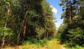 Trail Walk SAINT-JEAN-AUX-BOIS - en forêt de Compiègne_19_le Puits d'Antin_les Mares St-Louis_La Muette - Photo 73