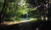 Randonnée Marche SAINT-JEAN-AUX-BOIS - en forêt de Compiègne_19_le Puits d'Antin_les Mares St-Louis_La Muette - Photo 212