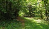 Randonnée Marche SAINT-JEAN-AUX-BOIS - en forêt de Compiègne_19_le Puits d'Antin_les Mares St-Louis_La Muette - Photo 101