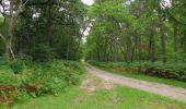 Randonnée Marche SAINT-JEAN-AUX-BOIS - en forêt de Compiègne_19_le Puits d'Antin_les Mares St-Louis_La Muette - Photo 60
