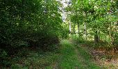 Randonnée Marche SAINT-JEAN-AUX-BOIS - en forêt de Compiègne_19_le Puits d'Antin_les Mares St-Louis_La Muette - Photo 136