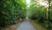 Randonnée Marche SAINT-JEAN-AUX-BOIS - en forêt de Compiègne_19_le Puits d'Antin_les Mares St-Louis_La Muette - Photo 215