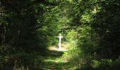 Randonnée Marche SAINT-JEAN-AUX-BOIS - en forêt de Compiègne_19_le Puits d'Antin_les Mares St-Louis_La Muette - Photo 144