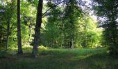 Randonnée Marche SAINT-JEAN-AUX-BOIS - en forêt de Compiègne_19_le Puits d'Antin_les Mares St-Louis_La Muette - Photo 198