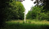 Randonnée Marche SAINT-JEAN-AUX-BOIS - en forêt de Compiègne_19_le Puits d'Antin_les Mares St-Louis_La Muette - Photo 103