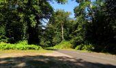 Randonnée Marche SAINT-JEAN-AUX-BOIS - en forêt de Compiègne_19_le Puits d'Antin_les Mares St-Louis_La Muette - Photo 161