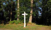 Randonnée Marche SAINT-JEAN-AUX-BOIS - en forêt de Compiègne_19_le Puits d'Antin_les Mares St-Louis_La Muette - Photo 204