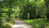 Randonnée Marche SAINT-JEAN-AUX-BOIS - en forêt de Compiègne_19_le Puits d'Antin_les Mares St-Louis_La Muette - Photo 84