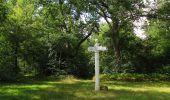 Randonnée Marche SAINT-JEAN-AUX-BOIS - en forêt de Compiègne_19_le Puits d'Antin_les Mares St-Louis_La Muette - Photo 117
