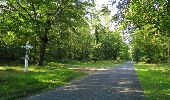 Randonnée Marche SAINT-JEAN-AUX-BOIS - en forêt de Compiègne_19_le Puits d'Antin_les Mares St-Louis_La Muette - Photo 195
