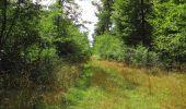 Randonnée Marche SAINT-JEAN-AUX-BOIS - en forêt de Compiègne_19_le Puits d'Antin_les Mares St-Louis_La Muette - Photo 122