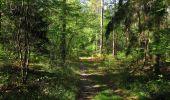 Trail Walk SAINT-JEAN-AUX-BOIS - en forêt de Compiègne_19_le Puits d'Antin_les Mares St-Louis_La Muette - Photo 67