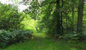 Randonnée Marche SAINT-JEAN-AUX-BOIS - en forêt de Compiègne_19_le Puits d'Antin_les Mares St-Louis_La Muette - Photo 116