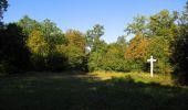 Randonnée Marche SAINT-JEAN-AUX-BOIS - en forêt de Compiègne_19_le Puits d'Antin_les Mares St-Louis_La Muette - Photo 191