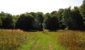Randonnée Marche SAINT-JEAN-AUX-BOIS - en forêt de Compiègne_19_le Puits d'Antin_les Mares St-Louis_La Muette - Photo 168