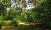 Trail Walk SAINT-JEAN-AUX-BOIS - en forêt de Compiègne_19_le Puits d'Antin_les Mares St-Louis_La Muette - Photo 72