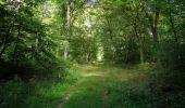 Randonnée Marche SAINT-JEAN-AUX-BOIS - en forêt de Compiègne_19_le Puits d'Antin_les Mares St-Louis_La Muette - Photo 143