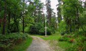 Trail Walk SAINT-JEAN-AUX-BOIS - en forêt de Compiègne_19_le Puits d'Antin_les Mares St-Louis_La Muette - Photo 173