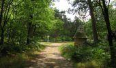 Trail Walk SAINT-JEAN-AUX-BOIS - en forêt de Compiègne_19_le Puits d'Antin_les Mares St-Louis_La Muette - Photo 153