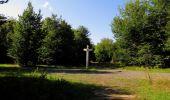 Randonnée Marche SAINT-JEAN-AUX-BOIS - en forêt de Compiègne_19_le Puits d'Antin_les Mares St-Louis_La Muette - Photo 165