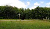 Randonnée Marche SAINT-JEAN-AUX-BOIS - en forêt de Compiègne_19_le Puits d'Antin_les Mares St-Louis_La Muette - Photo 107