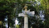 Randonnée Marche SAINT-JEAN-AUX-BOIS - en forêt de Compiègne_19_le Puits d'Antin_les Mares St-Louis_La Muette - Photo 199