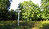 Trail Walk SAINT-JEAN-AUX-BOIS - en forêt de Compiègne_19_le Puits d'Antin_les Mares St-Louis_La Muette - Photo 52
