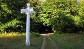 Randonnée Marche SAINT-JEAN-AUX-BOIS - en forêt de Compiègne_19_le Puits d'Antin_les Mares St-Louis_La Muette - Photo 213