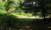 Randonnée Marche SAINT-JEAN-AUX-BOIS - en forêt de Compiègne_19_le Puits d'Antin_les Mares St-Louis_La Muette - Photo 112