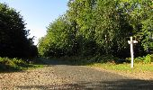 Randonnée Marche SAINT-JEAN-AUX-BOIS - en forêt de Compiègne_19_le Puits d'Antin_les Mares St-Louis_La Muette - Photo 205