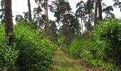 Randonnée Marche SAINT-JEAN-AUX-BOIS - en forêt de Compiègne_19_le Puits d'Antin_les Mares St-Louis_La Muette - Photo 33