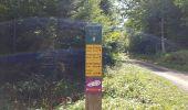 Trail Other activity VASSIEUX-EN-VERCORS - Boucle du but St Genix - Photo 3