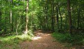 Trail Walk LONGPONT - en forêt de Retz_66_sur la Route Droite - Photo 60