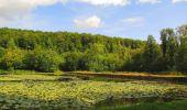 Trail Walk LONGPONT - en forêt de Retz_66_sur la Route Droite - Photo 52