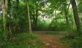 Trail Walk LONGPONT - en forêt de Retz_66_sur la Route Droite - Photo 27