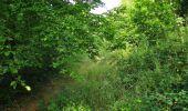 Trail Walk LONGPONT - en forêt de Retz_66_sur la Route Droite - Photo 38