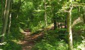 Trail Walk LONGPONT - en forêt de Retz_66_sur la Route Droite - Photo 55