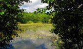 Trail Walk LONGPONT - en forêt de Retz_66_sur la Route Droite - Photo 8