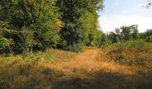 Trail Walk LONGPONT - en forêt de Retz_66_sur la Route Droite - Photo 45