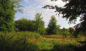 Trail Walk LONGPONT - en forêt de Retz_66_sur la Route Droite - Photo 34