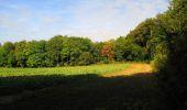 Trail Walk LONGPONT - en forêt de Retz_66_sur la Route Droite - Photo 24