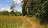 Trail Walk LONGPONT - en forêt de Retz_66_sur la Route Droite - Photo 64