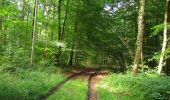 Trail Walk LONGPONT - en forêt de Retz_66_sur la Route Droite - Photo 33