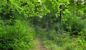 Trail Walk LONGPONT - en forêt de Retz_66_sur la Route Droite - Photo 30